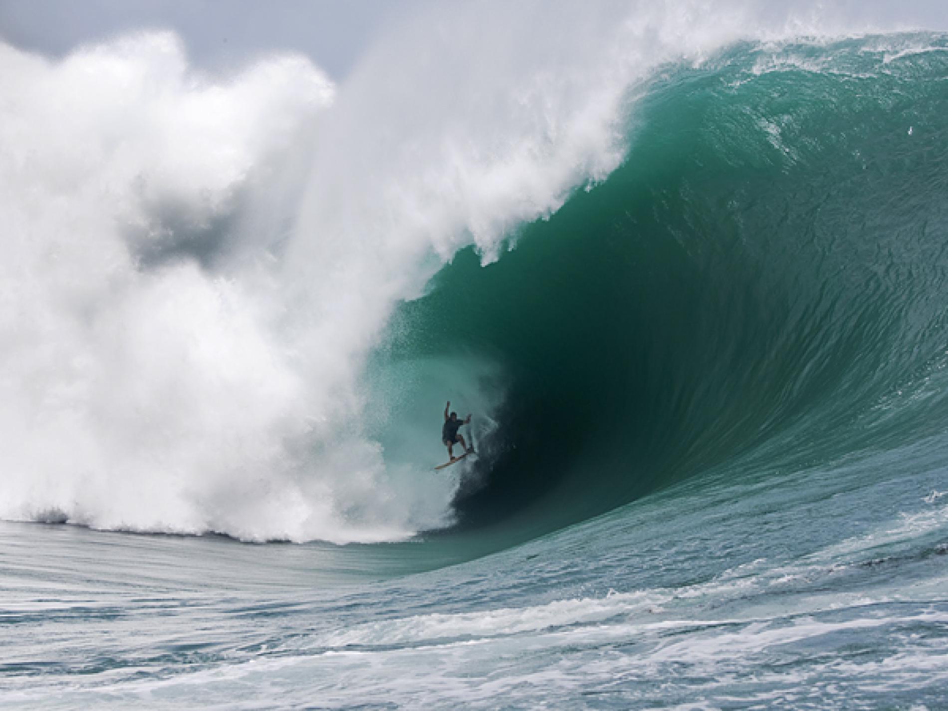 type de combinaison surf