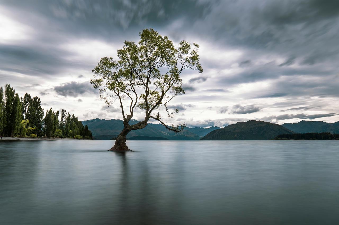 Lake Wanaka voyage Nouvelle Zélande